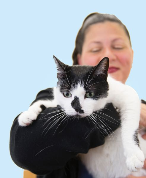 Domestic Violence Survivor Holds a Cat with a White Background