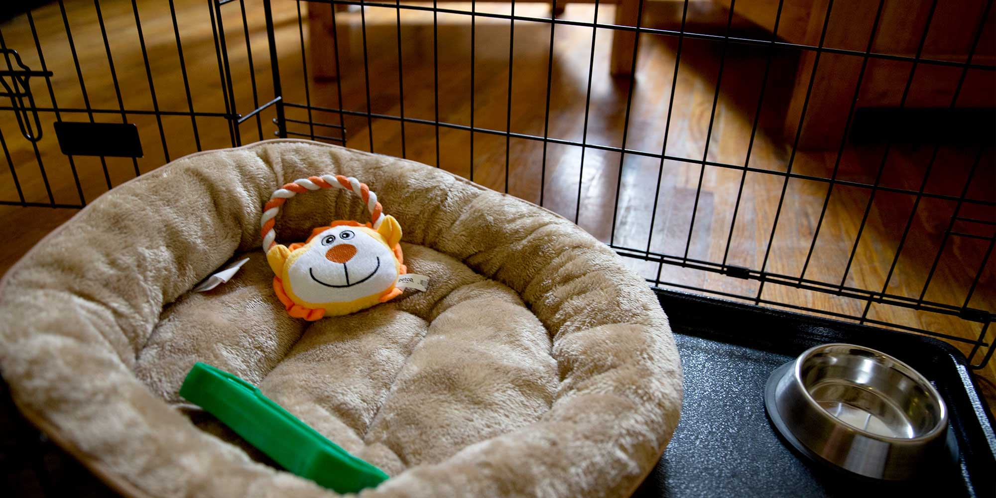 A Pet Bed at One of PALS Domestic Violence Shelters